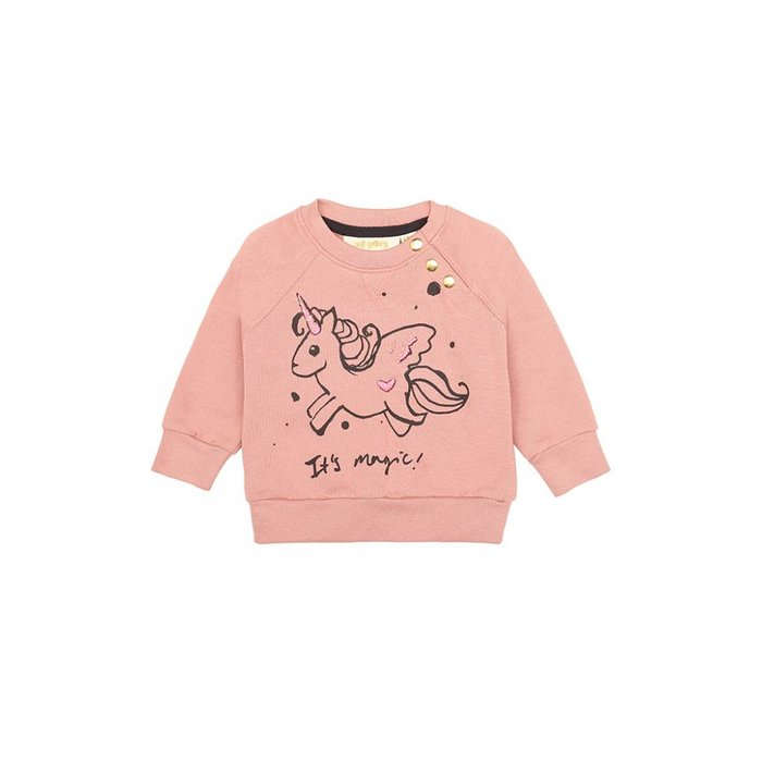 Alexi Girl Sweatshirt Rose Dawn