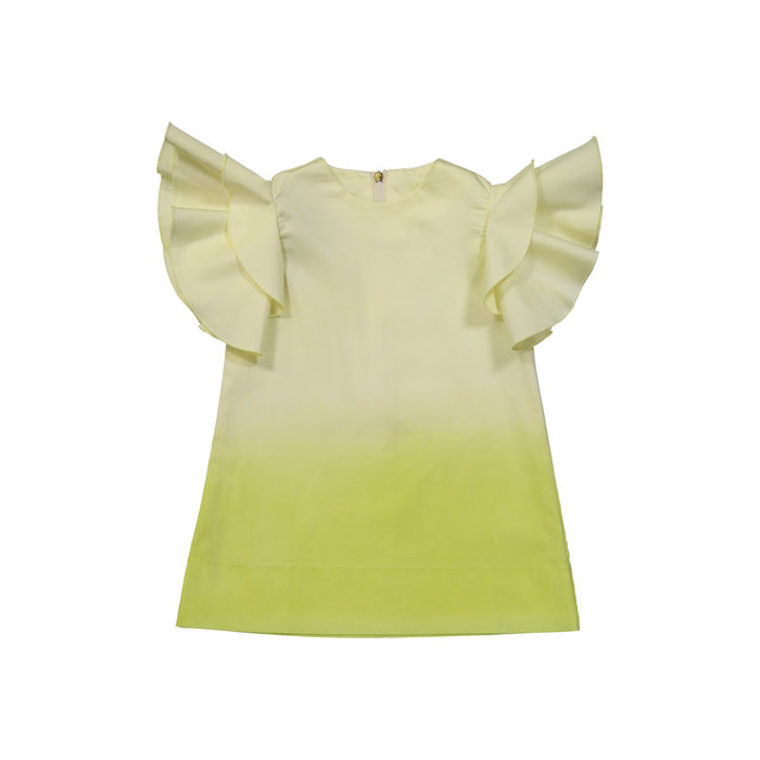 Ombre ruffle Sleeve Green