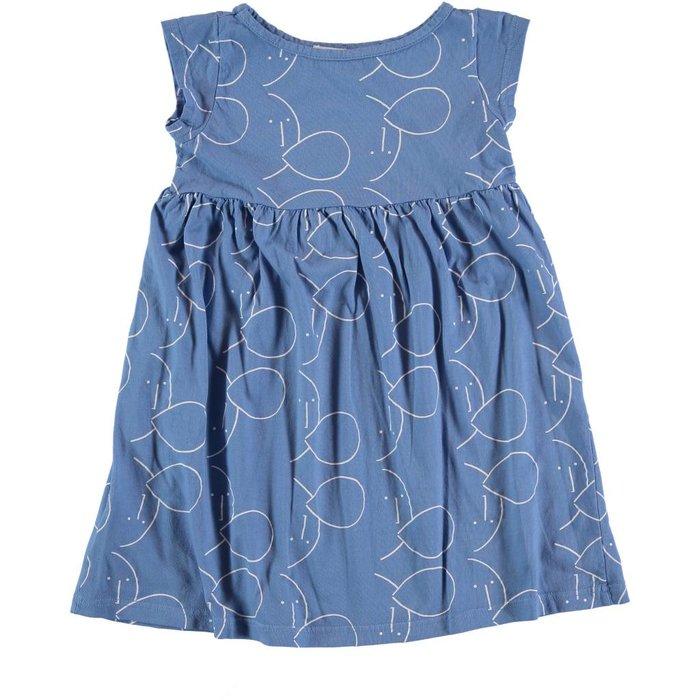 Girls Dress Blue