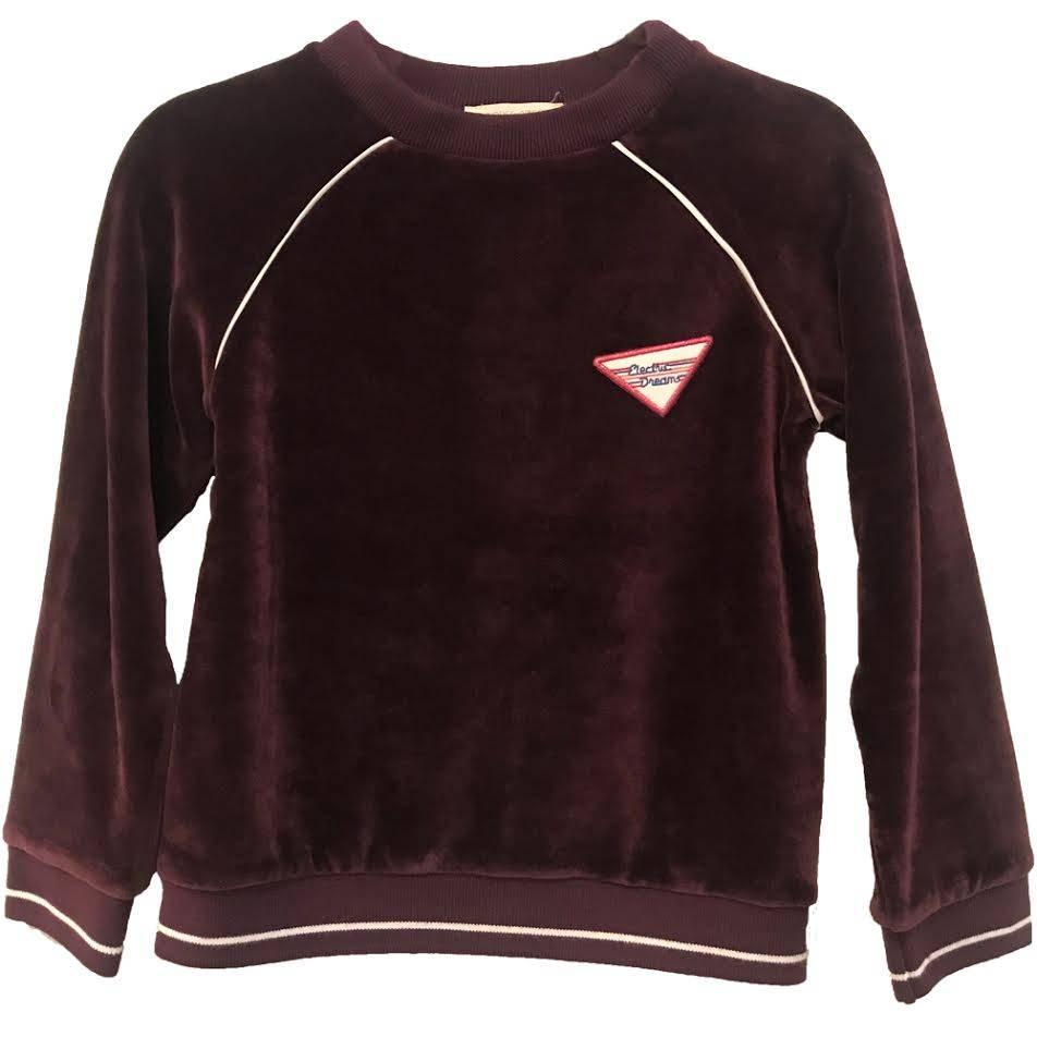 Electric Dreams Velvet Sweatshirt Plum