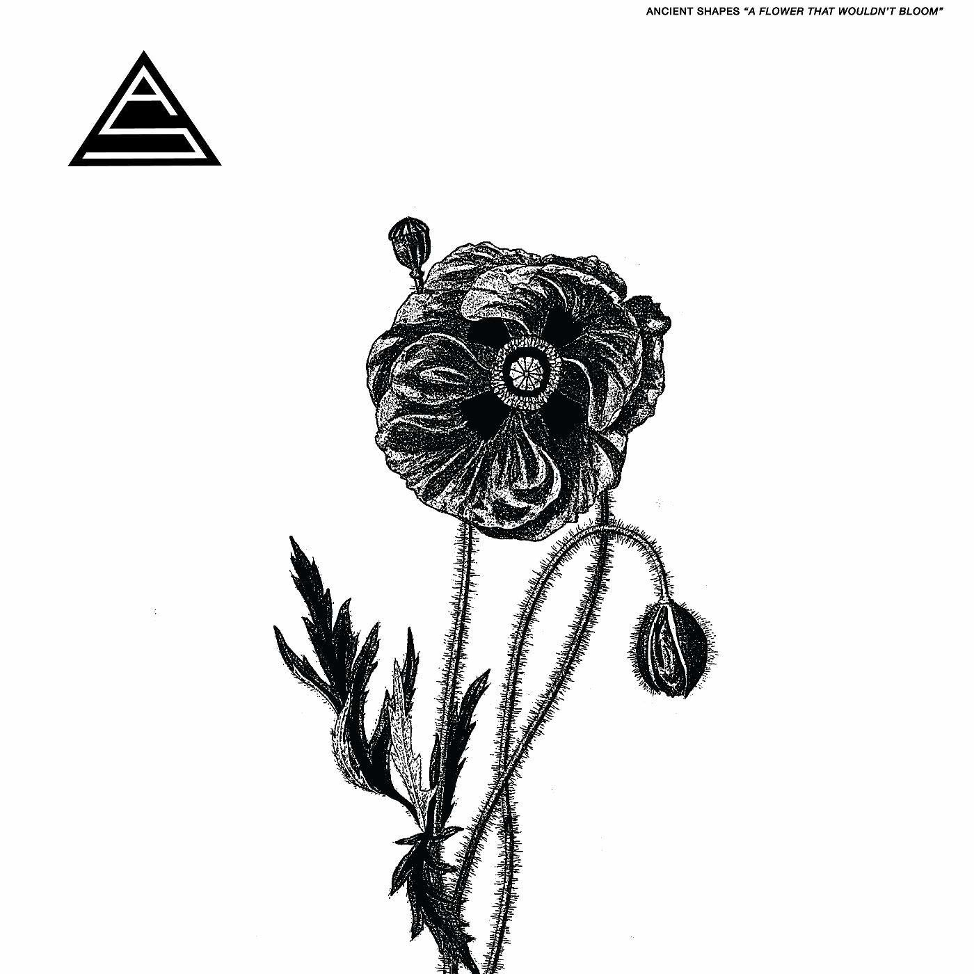 Ancient Shapes - A Flower That Wouldn't Bloom