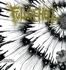 Full Of Hell - Amber Mote In The Black Vault