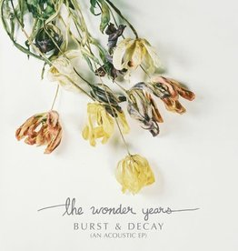 Wonder Years - Burst & Decay
