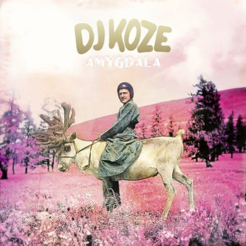 DJ Koze - Amygdala