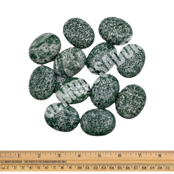 Green Point Jade - Palm Stone Pillow (12 piece  parcel)