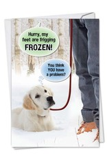 Noble Works Card Feet are Frigging Frozen