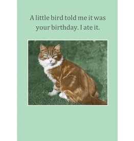 Cath Tate Cards A Little Bird Birthday Card