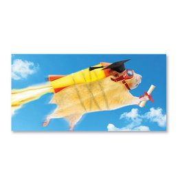 Marion Heath Card-Graduation Hamster w/Rocket