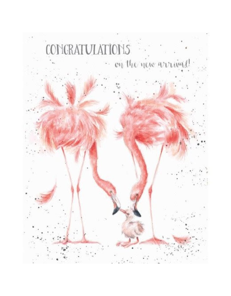 WRENDALE Card-Congratulations on New Arrival