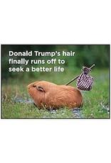 Ephemera Magnet- Trump's Hair
