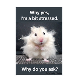 Ephemera Magnet- I'm a Bit Stressed