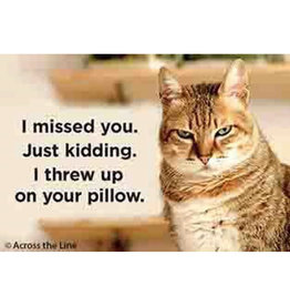 Ephemera Magnet-Threw Up On Your Pillow