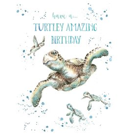 WRENDALE Card-Turtley Amazing Birthday