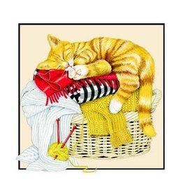 Sugarhouse/Bottman Enclosure Card- Cat Laundry