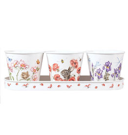 WRENDALE Set of 3 Herb Pots/W Tray - Floral
