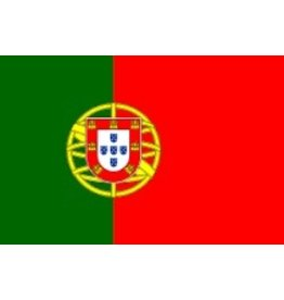 PORTUGUESE FLAG PICK BOX 100 CT