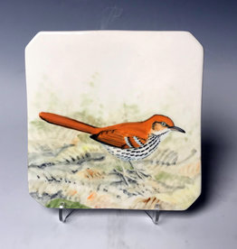 Avian Clay Brown Thrasher Plate