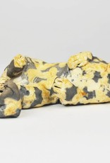 Nina Ward Black & Tan Tortoise Shell Cat