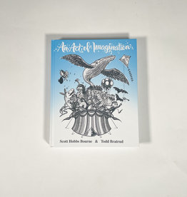 AN ACT OF IMAGINATION AN ACT OF IMAGINATION BOOK