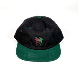 PASSPORT PASS-PORT LIFE OF LEISURE 6 PANEL HAT - FOREST GREEN/BLACK