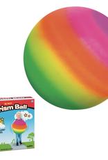 Toysmith Prism Ball