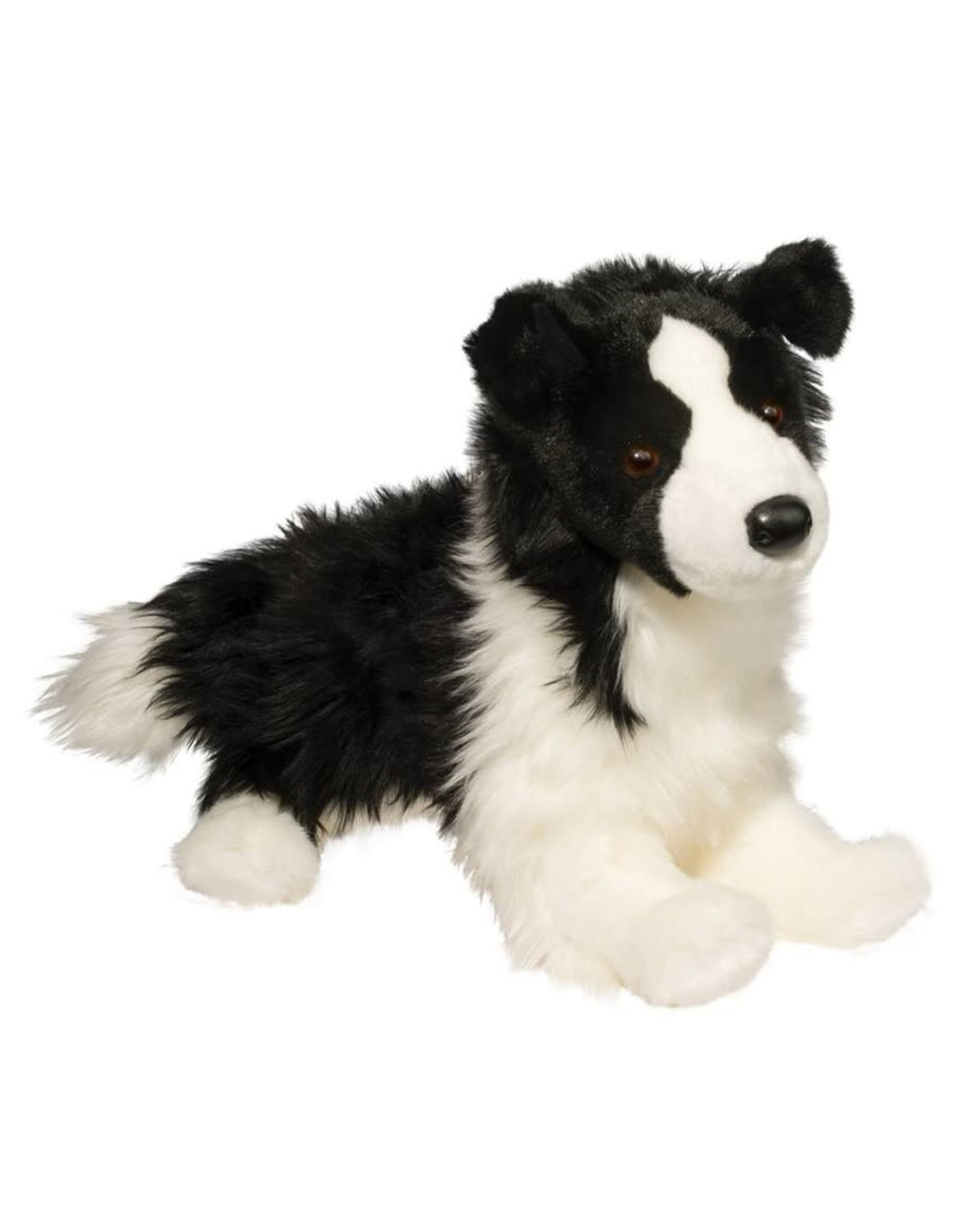 Douglas Douglas - ''Chase'' Border Collie