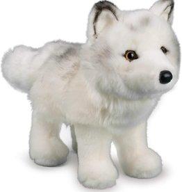 Douglas Douglas - ''Snow Queen'' Arctic Fox