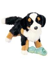 Douglas Douglas - ''Trevor'' Bernese Mountain Dog