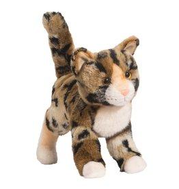 Douglas Douglas - ''Tashette'' Bengal Cat