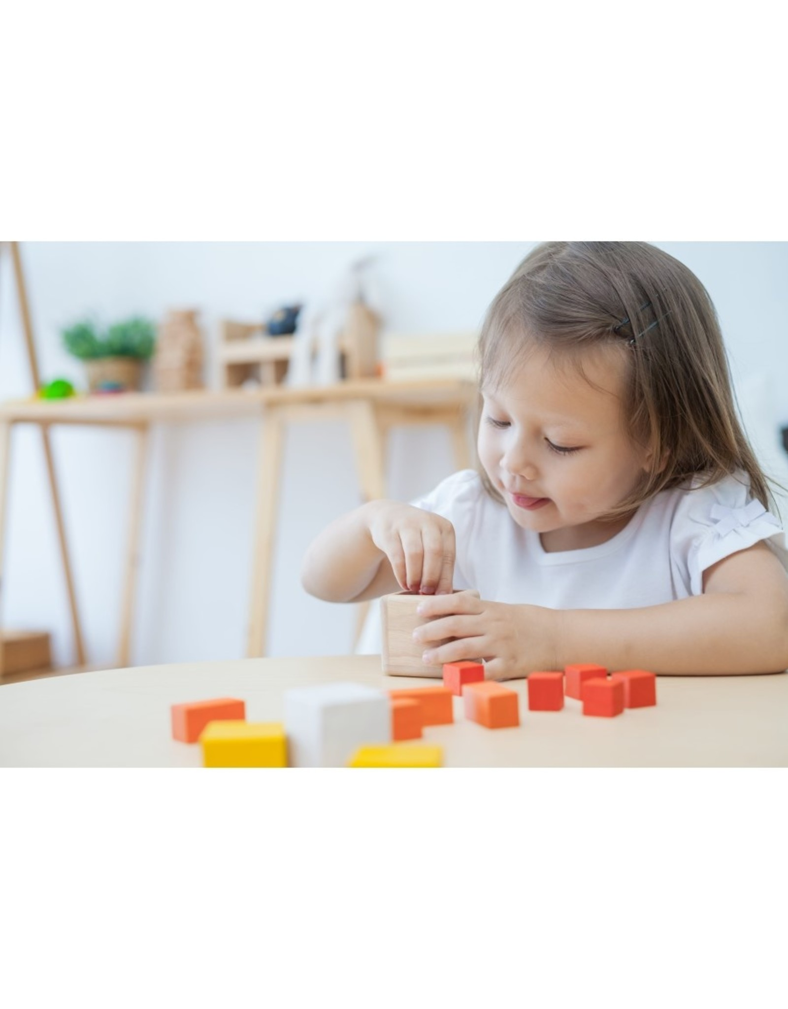 Plan Toys Plan - Fraction Cubes
