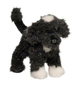 Douglas Douglas - ''Moxie'' Portuguese Water Dog