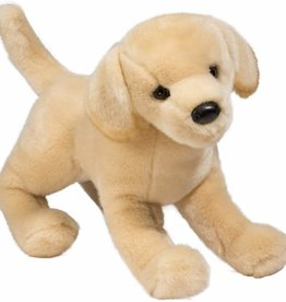 Douglas Douglas - ''Mandy'' Yellow Labrador