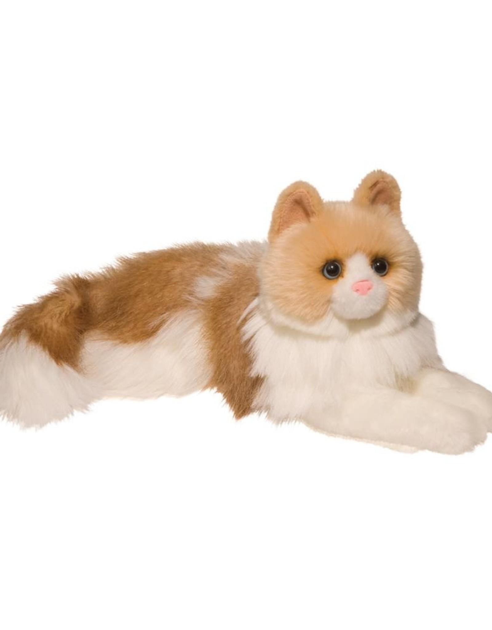 """Douglas - """"Kiki"""" Ragdoll Cat"""
