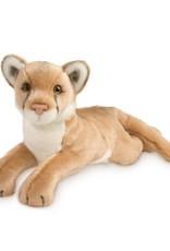 Douglas Douglas - ''Kelso'' Mountain Lion/Cougar
