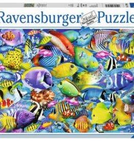 Ravensburger Tropical Traffic 500pc