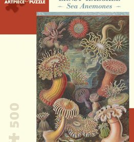 Pomegranate AA993 Ernst Haeckel - Sea anemones