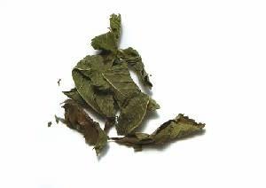 Épices de Cru Épices de cru - Morocco mint