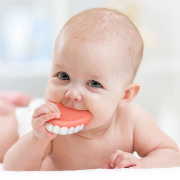 Fred Fred Chill baby false - Jouet de dentition