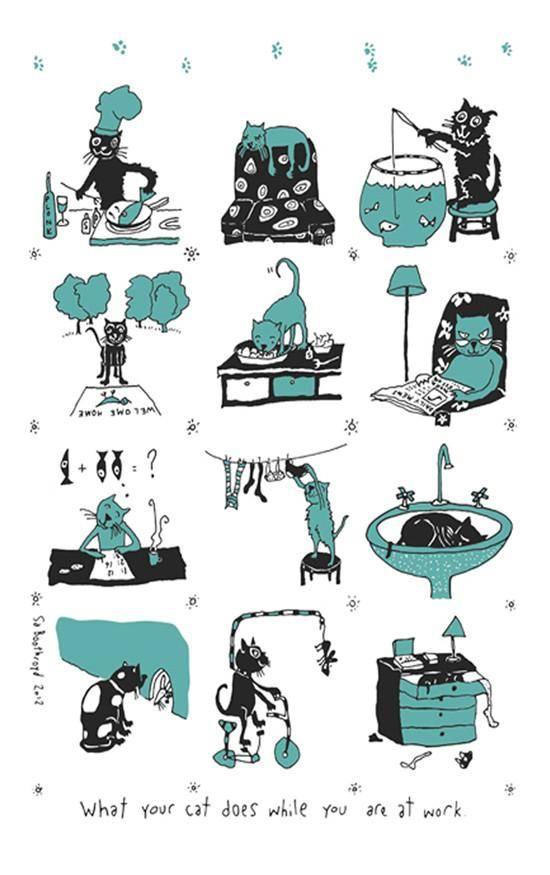 Linge à vaisselle - Chat