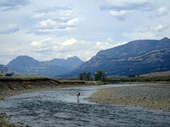 Yellowstone Park Fly Fishing