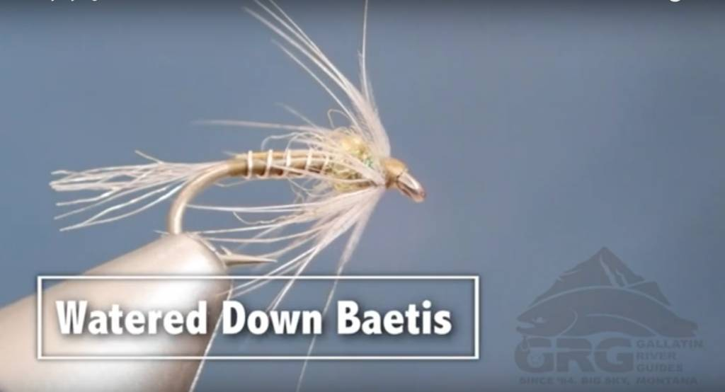GRG Fly Tying - Watered Down Baetis
