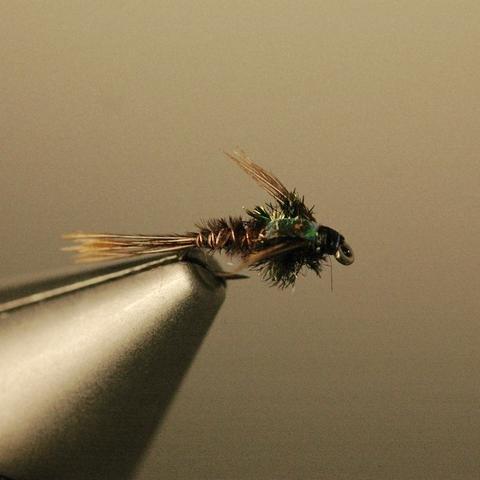 Thursday Night Fly Tying: Flashback Pheasant Tail and Para Wulff Adams