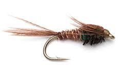 Thursday Night Fly Tying Night...Standard and Soft Hackled Pheasant