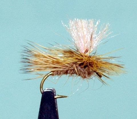 Thursday Night Fly Tying Night...Bloom's Parachute Caddis by Dave Bloom