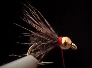 Wednesday Night Fly Tying...Trout Crack (Beadhead Soft Hackle Peacock) YouTube Video