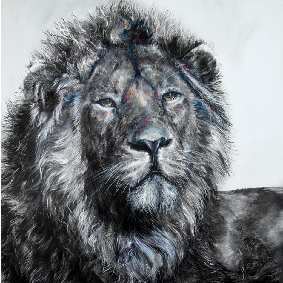 Lion- matted