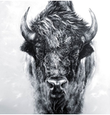 Bison- matted