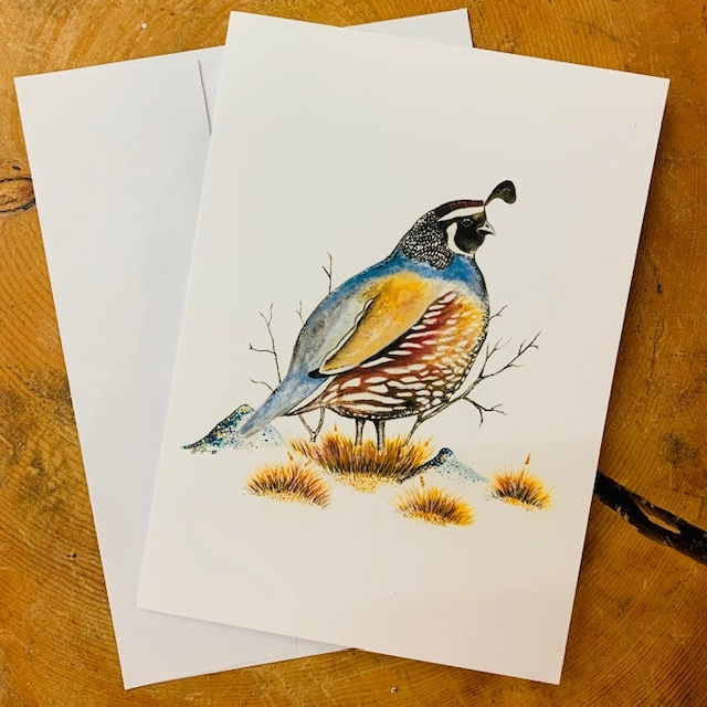 Bird Cards-pack of 5