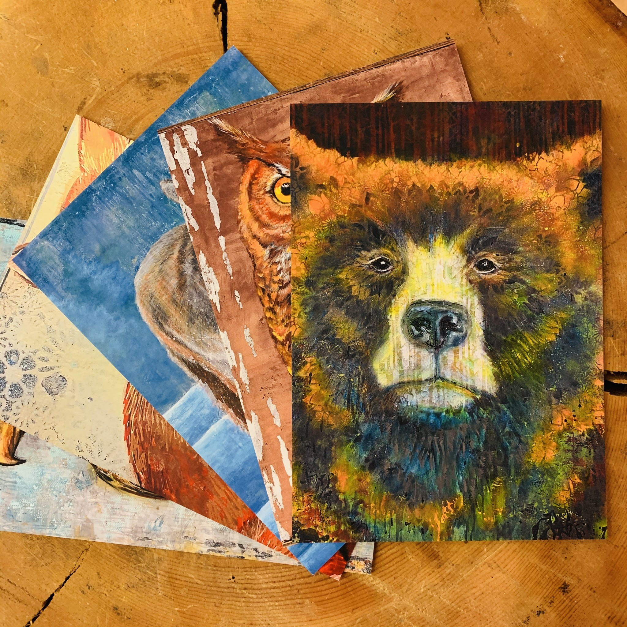 Animal post cards-5 pack