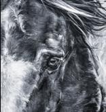 Wild Mustang 48x60